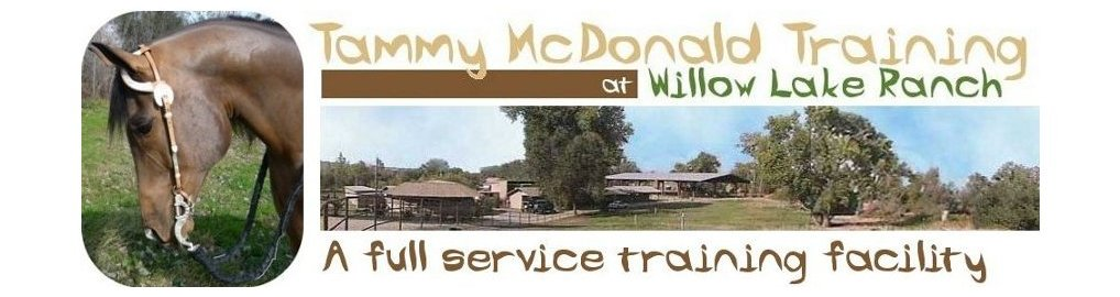 Tammy McDonald Training A full service horse training stable serving Northern California, including Sacramento, Placer County, Auburn and Placerville