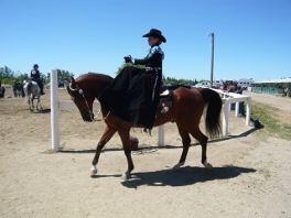 Katie Desi side saddle Daha2010
